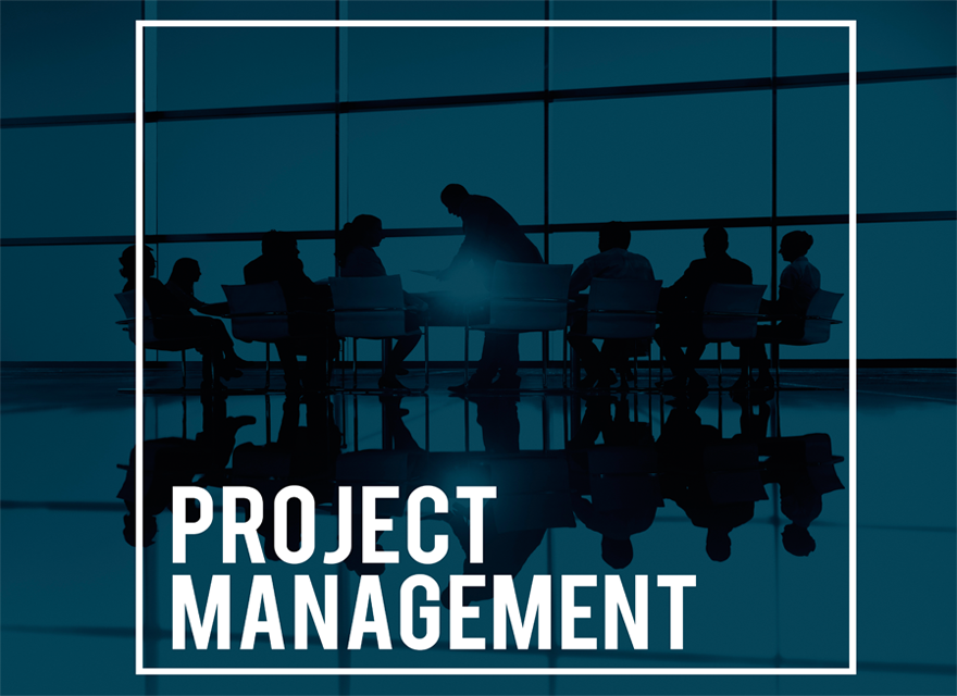 Essentials of Leadership in Project Management